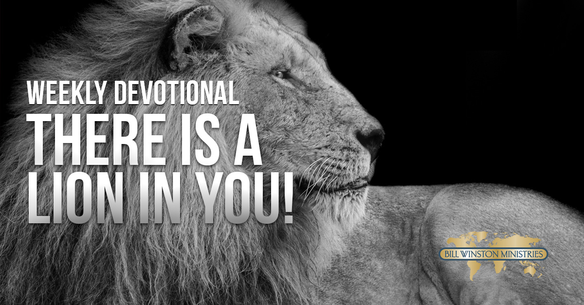 There is a Lion in You!